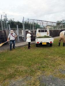 臨時の草刈り作業